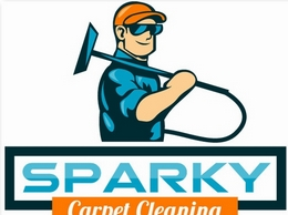 https://www.sparkycarpetcleaning.com/ website