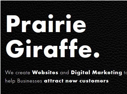 https://prairiegiraffe.com/ website